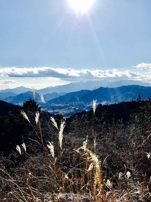 画像: 山頂からの景色。快晴で遠くまでよく見えました。