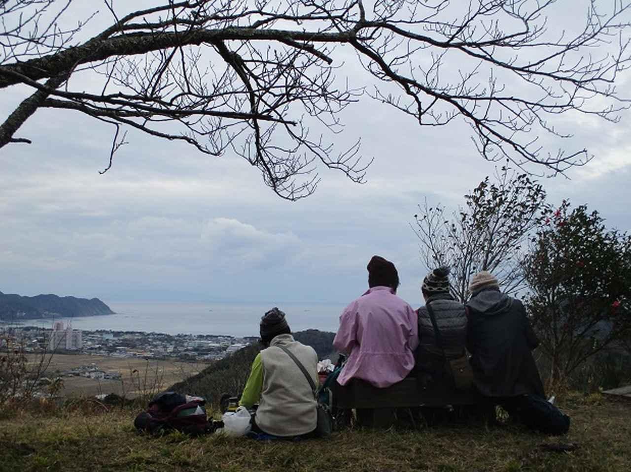 画像13: 新年1本目は房総の 「とみやま水仙遊歩道」 へ1月15日に 行って来ました♪
