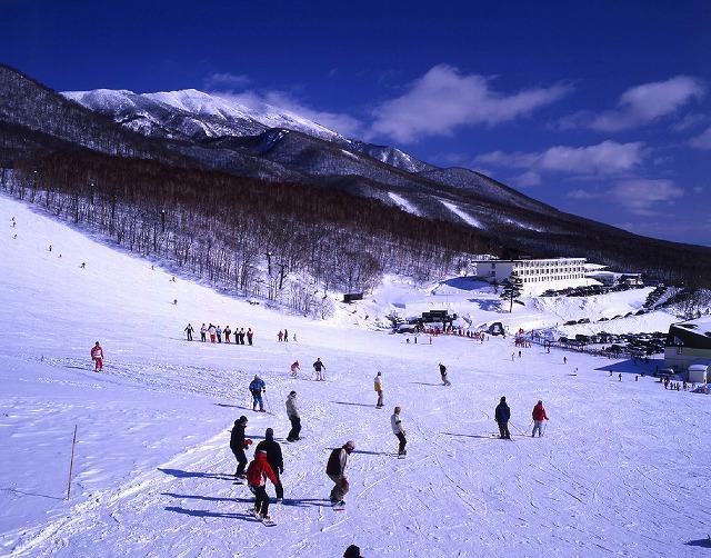 画像: 広大なゲレンデを駆ける「スキー場めぐりプラン」のお申込はこちらから!