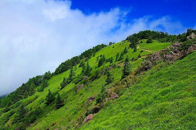 画像: <First Alps Academy Lesson3>『登山中級A ペース配分を考えて歩く 苔の森から日本百名山大菩薩嶺』|クラブツーリズム