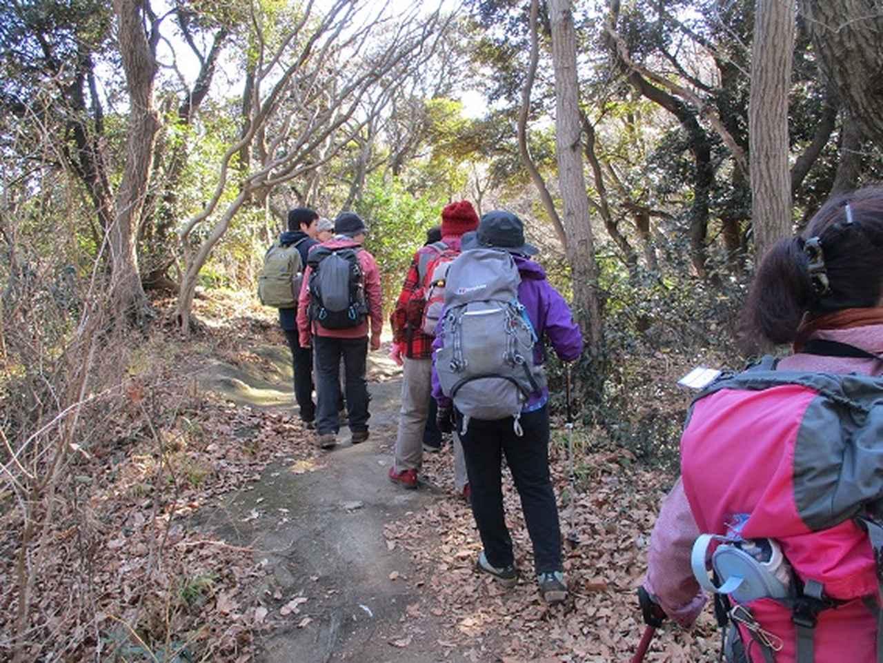 画像9: 【山旅会・登山ガイドこだわりツアー】添乗員からの便り・鷹取山から浜見台ツアーにいってまいりました!