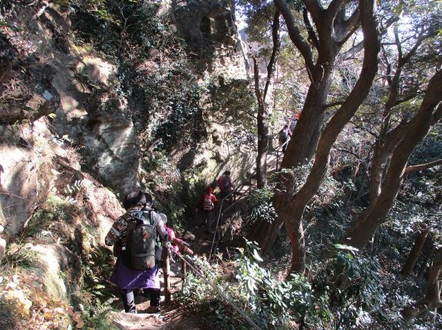 画像4: 【山旅会・登山ガイドこだわりツアー】添乗員からの便り・鷹取山から浜見台ツアーにいってまいりました!