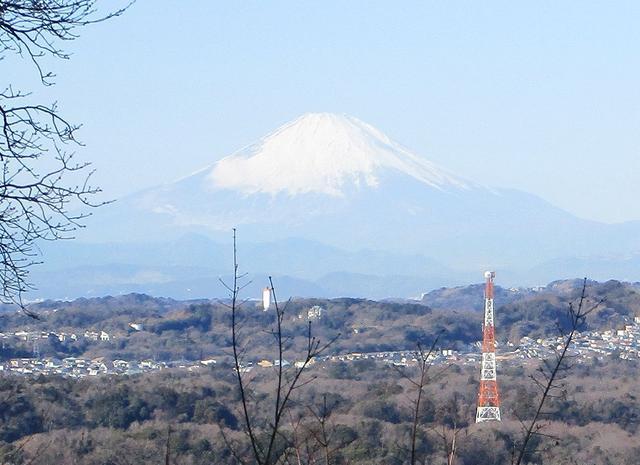 画像2: 【山旅会・登山ガイドこだわりツアー】添乗員からの便り・鷹取山から浜見台ツアーにいってまいりました!