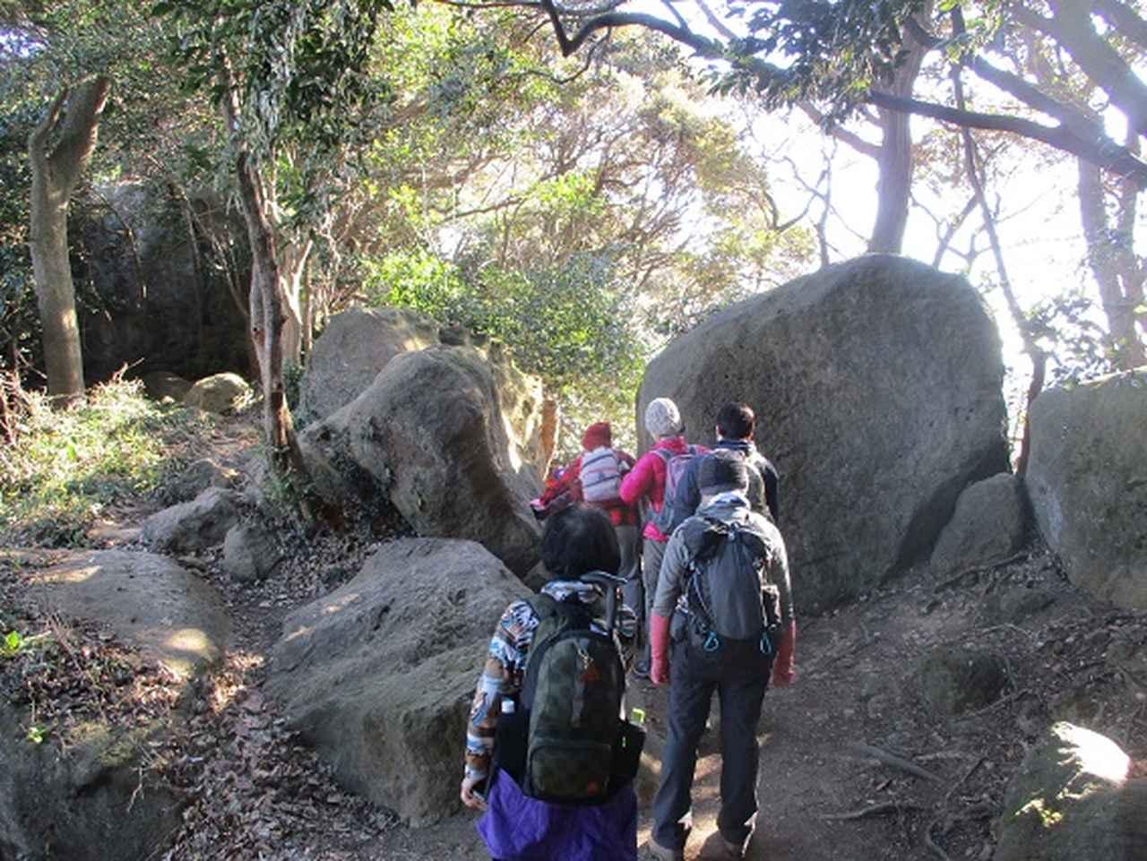 画像3: 【山旅会・登山ガイドこだわりツアー】添乗員からの便り・鷹取山から浜見台ツアーにいってまいりました!
