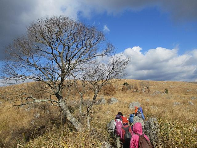画像7: 【山旅会・登山ガイドこだわりツアー】添乗員からの便り・広島県と山口県のツアーにいってまいりました!(その2)