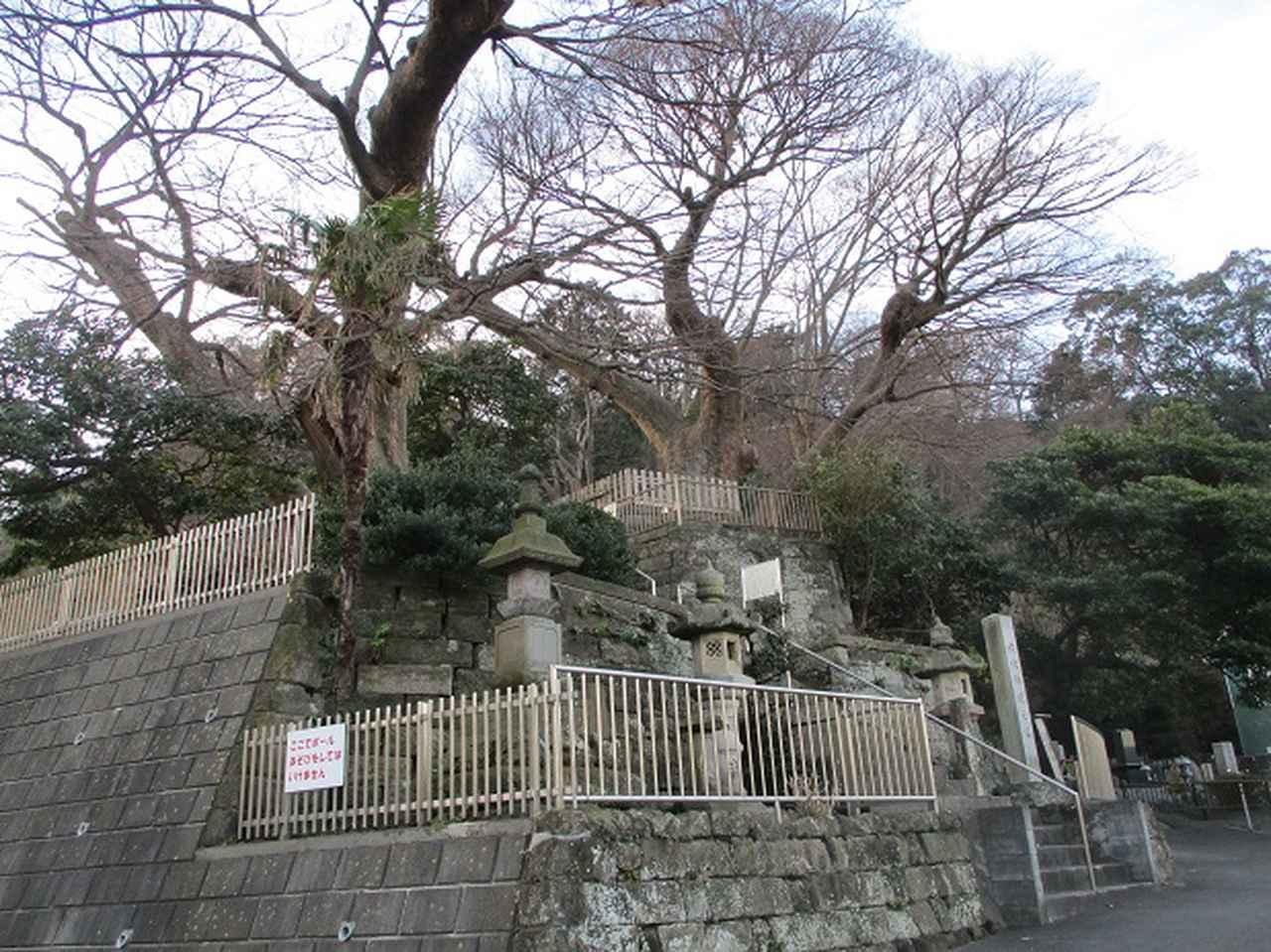 画像1: 【山旅会・登山ガイドこだわりツアー】添乗員からの便り・阿部倉山から二子山ツアーの下見にいってまいりました!