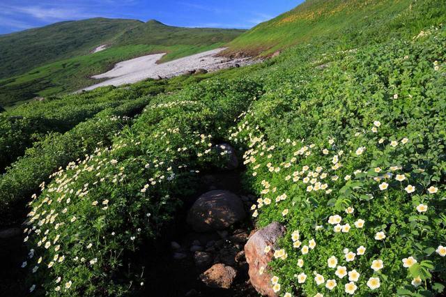 画像: 登山・ハイキング・ウォーキングツアー「あるく」