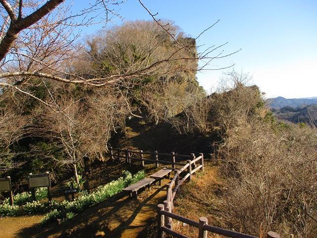 画像1: 【山旅会・登山ガイドこだわりツアー】岡田ガイドからの便り・高宕山ツアーにいってまいりました!