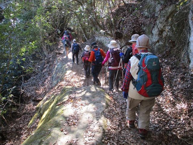 画像5: 【山旅会・登山ガイドこだわりツアー】岡田ガイドからの便り・高宕山ツアーにいってまいりました!