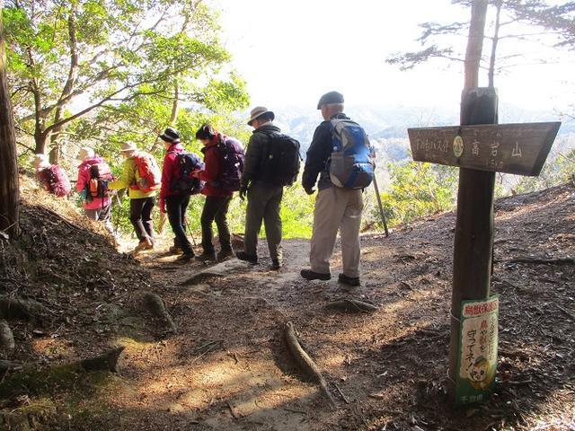 画像13: 【山旅会・登山ガイドこだわりツアー】岡田ガイドからの便り・高宕山ツアーにいってまいりました!