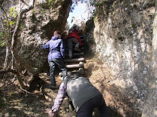 画像9: 【山旅会・登山ガイドこだわりツアー】岡田ガイドからの便り・高宕山ツアーにいってまいりました!