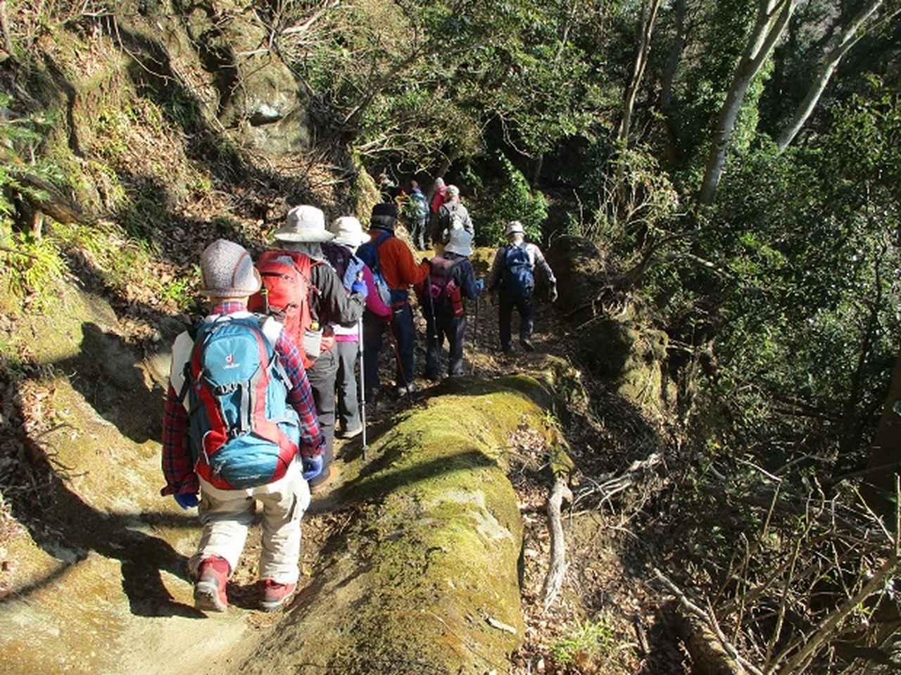 画像4: 【山旅会・登山ガイドこだわりツアー】岡田ガイドからの便り・高宕山ツアーにいってまいりました!