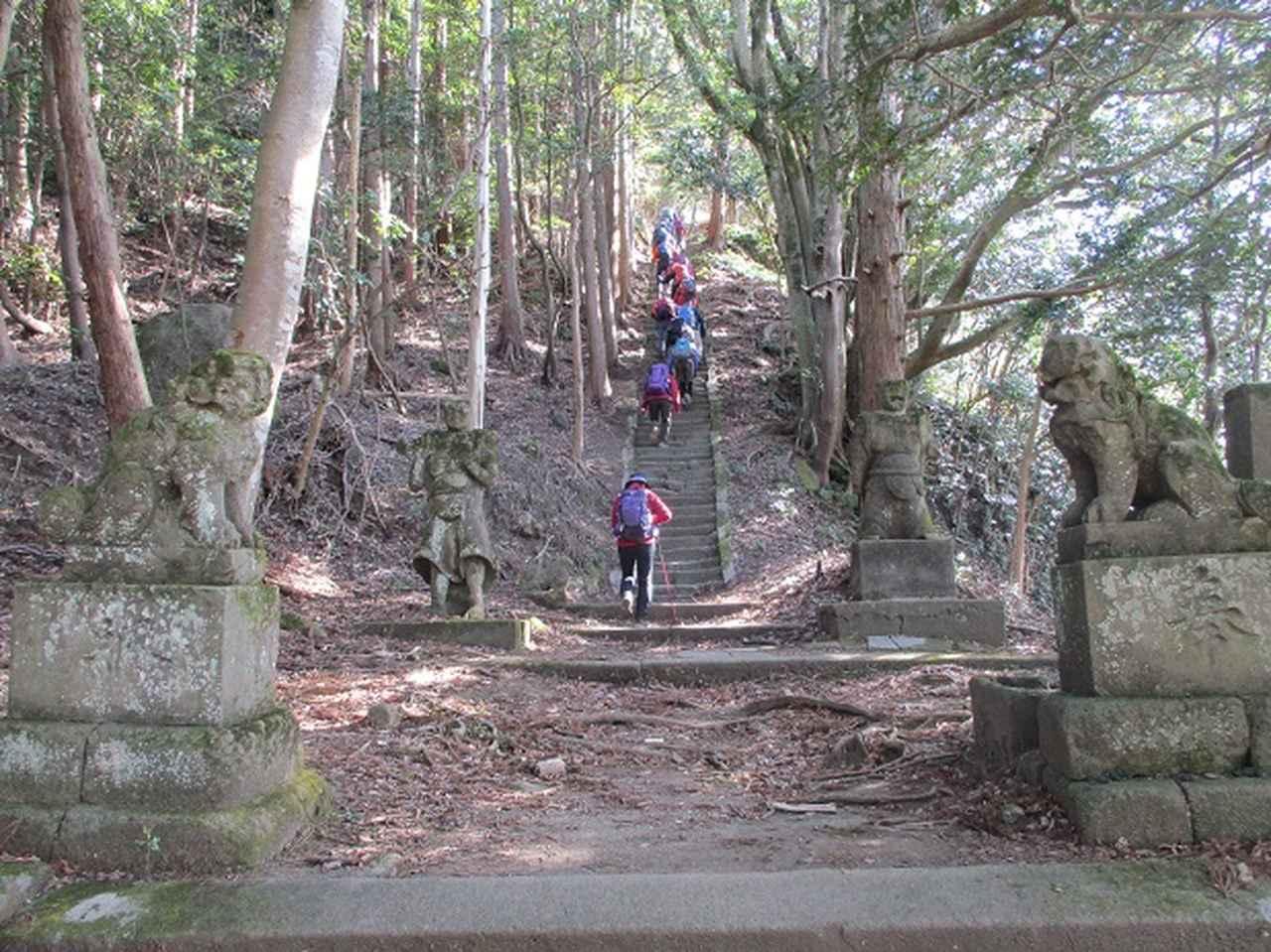 画像6: 【山旅会・登山ガイドこだわりツアー】岡田ガイドからの便り・高宕山ツアーにいってまいりました!