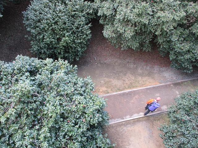 画像12: 【山旅会・登山ガイドこだわりツアー】添乗員からの便り・広島県と山口県のツアーにいってまいりました!(その3)