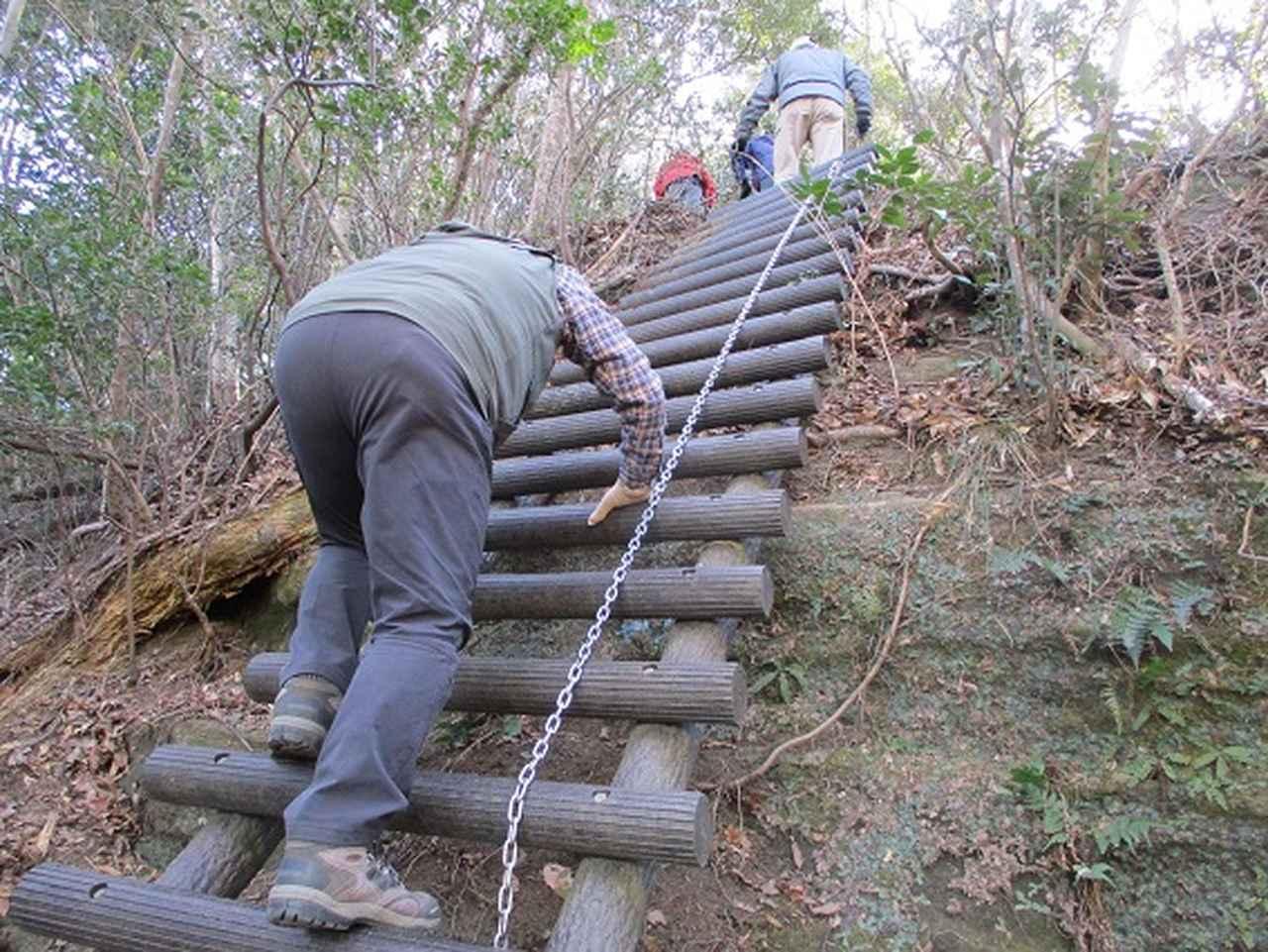 画像8: 【山旅会・登山ガイドこだわりツアー】岡田ガイドからの便り・高宕山ツアーにいってまいりました!