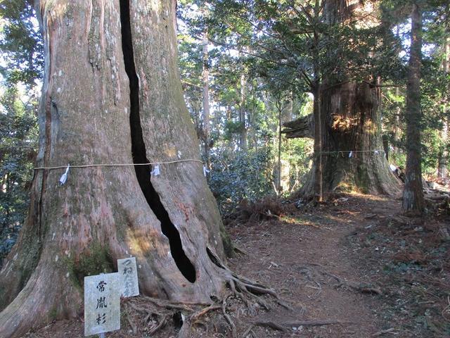 画像10: 【山旅会・登山ガイドこだわりツアー】岡田ガイドからの便り・千葉山ツアーの下見にいってまいりました!