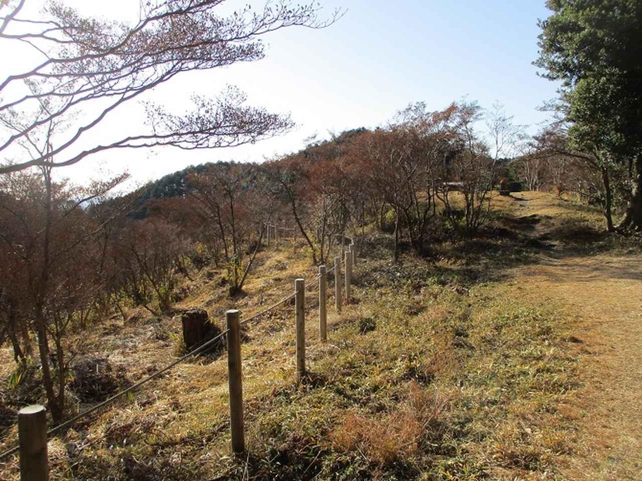 画像13: 【山旅会・登山ガイドこだわりツアー】岡田ガイドからの便り・千葉山ツアーの下見にいってまいりました!