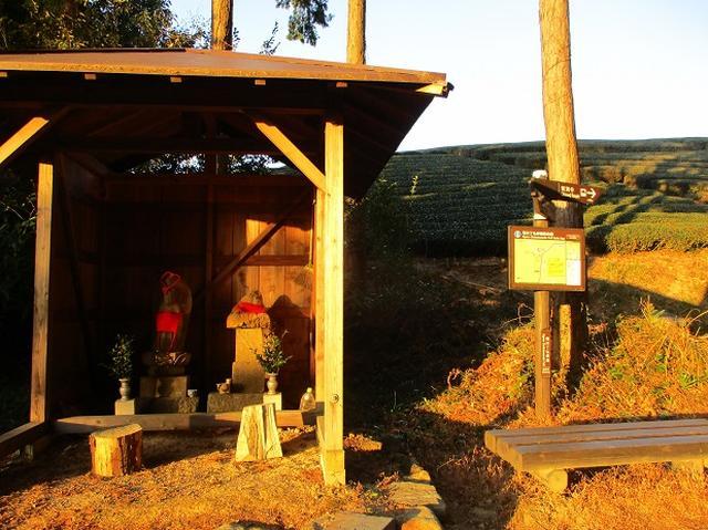 画像3: 【山旅会・登山ガイドこだわりツアー】岡田ガイドからの便り・千葉山ツアーの下見にいってまいりました!