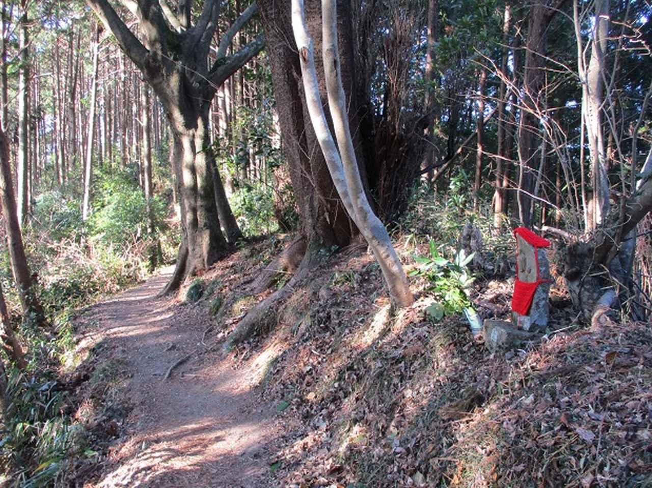画像12: 【山旅会・登山ガイドこだわりツアー】岡田ガイドからの便り・千葉山ツアーの下見にいってまいりました!