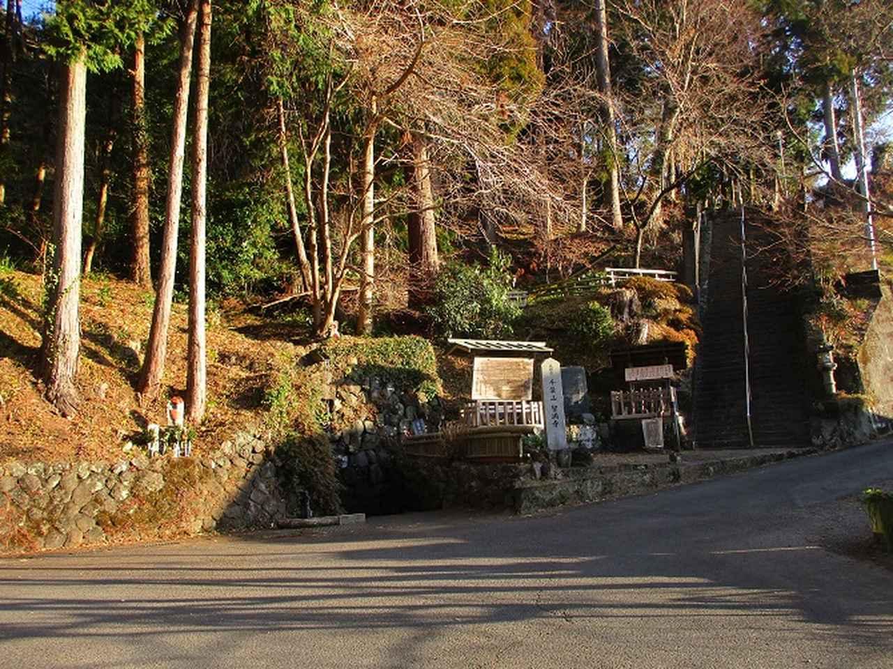 画像6: 【山旅会・登山ガイドこだわりツアー】岡田ガイドからの便り・千葉山ツアーの下見にいってまいりました!