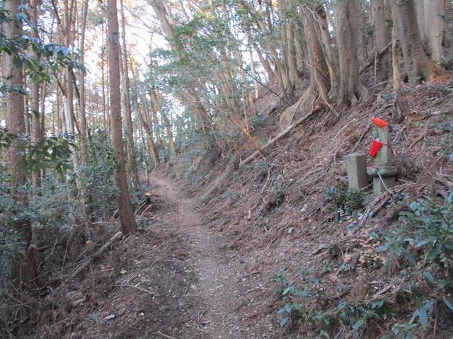 画像2: 【山旅会・登山ガイドこだわりツアー】岡田ガイドからの便り・千葉山ツアーの下見にいってまいりました!