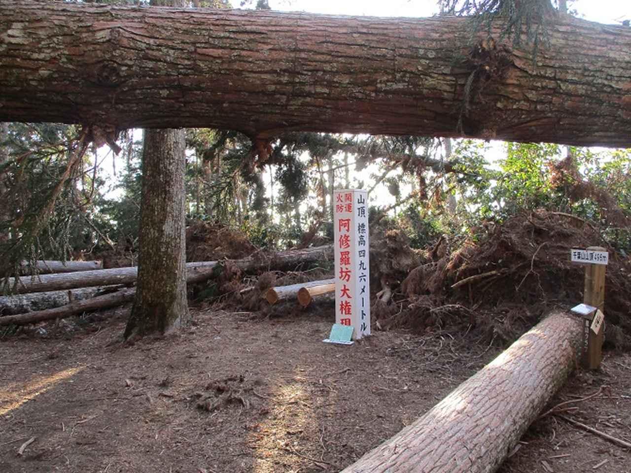 画像8: 【山旅会・登山ガイドこだわりツアー】岡田ガイドからの便り・千葉山ツアーの下見にいってまいりました!