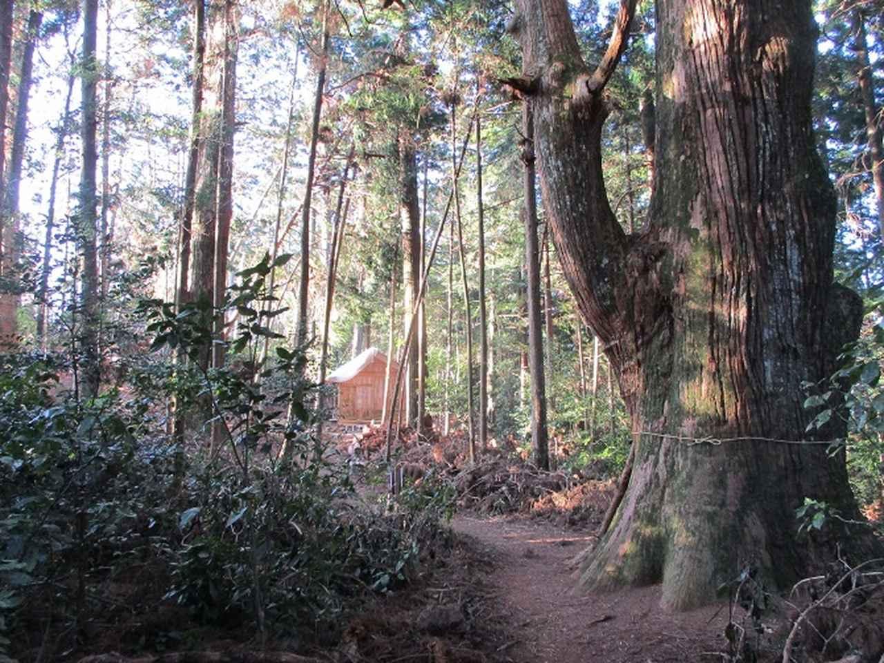 画像9: 【山旅会・登山ガイドこだわりツアー】岡田ガイドからの便り・千葉山ツアーの下見にいってまいりました!