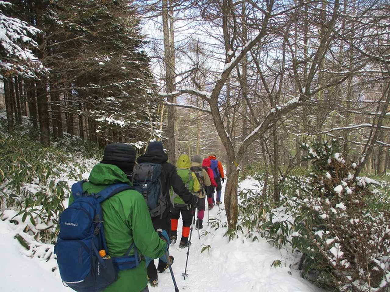 画像8: 【山旅会・登山ガイドこだわりツアー】岡田ガイドからの便り・入笠山ツアーにいってまいりました!