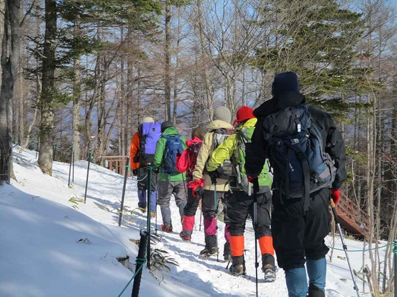 画像1: 【山旅会・登山ガイドこだわりツアー】岡田ガイドからの便り・入笠山ツアーにいってまいりました!