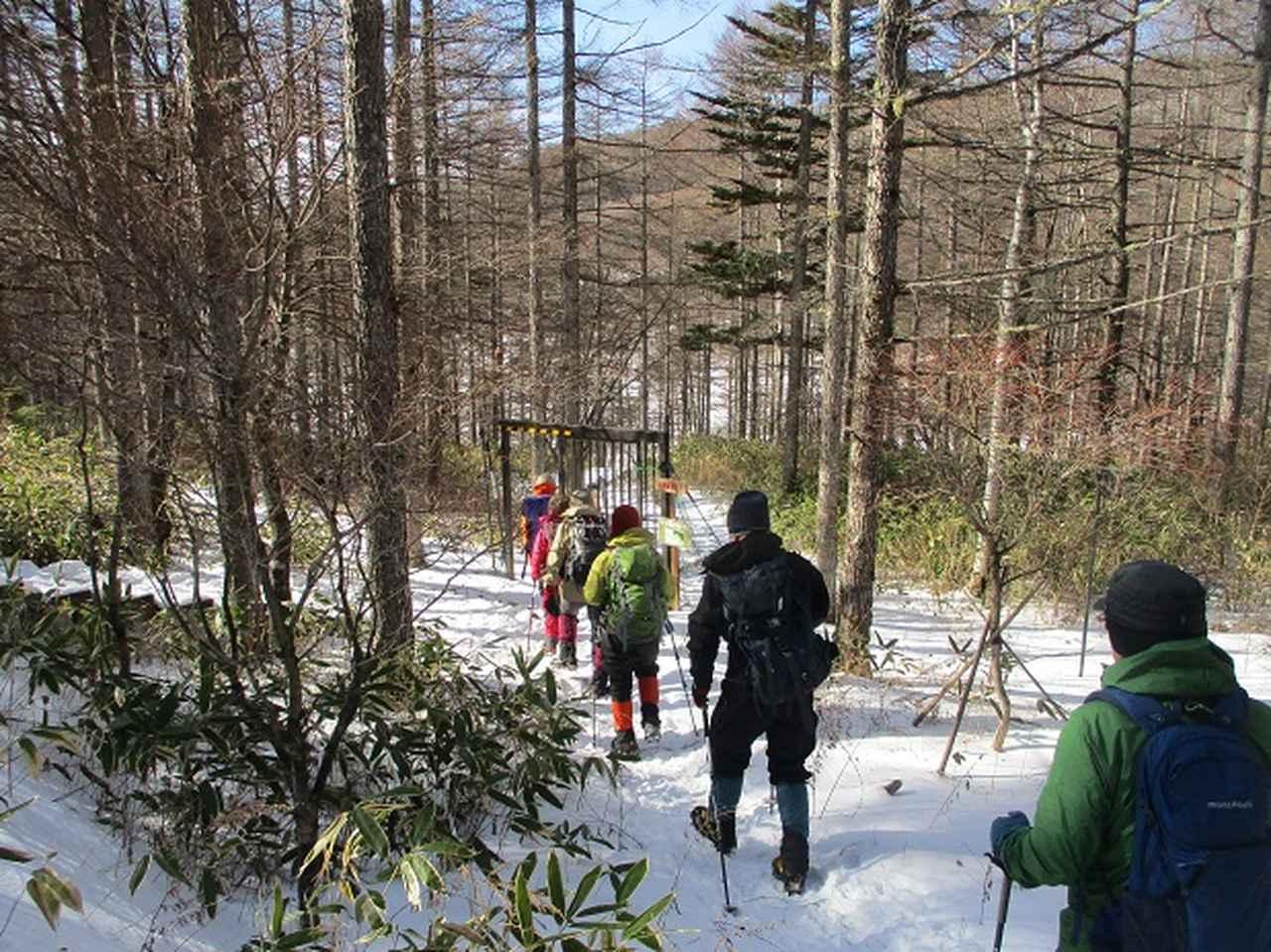 画像2: 【山旅会・登山ガイドこだわりツアー】岡田ガイドからの便り・入笠山ツアーにいってまいりました!