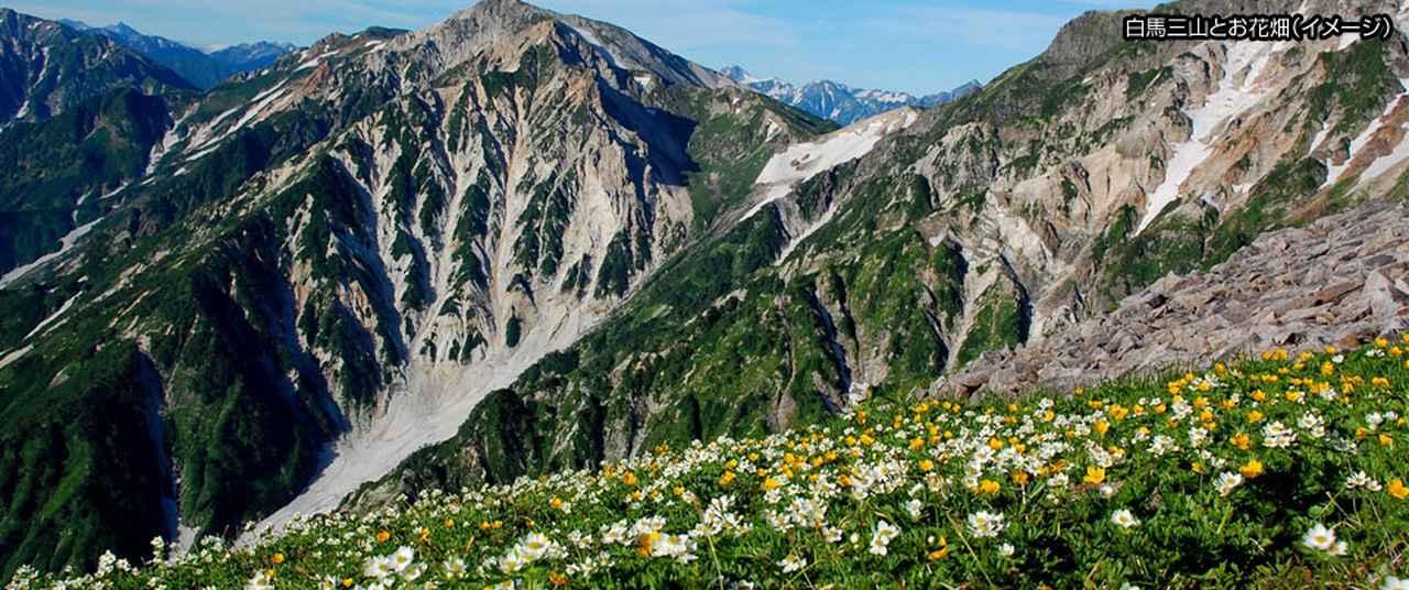 画像: 登山・ハイキング・ウォーキング 旅行・ツアー特集
