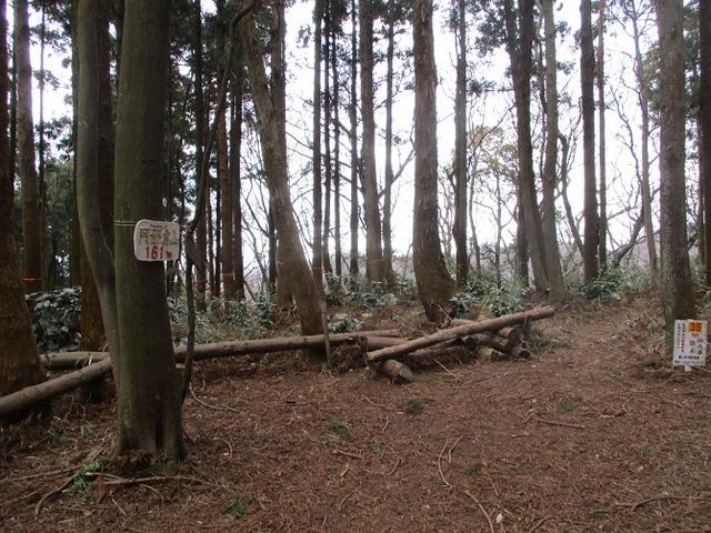 画像5: 【山旅会・登山ガイドこだわりツアー】岡田ガイドからの便り・阿部倉山から二子山ツアーにいってまいりました!