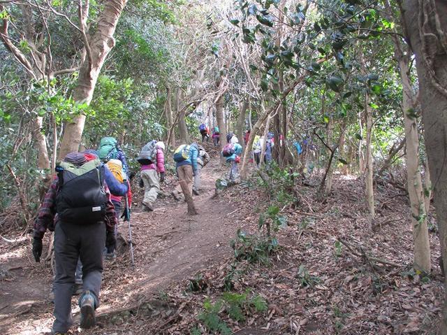 画像9: 【山旅会・登山ガイドこだわりツアー】岡田ガイドからの便り・阿部倉山から二子山ツアーにいってまいりました!