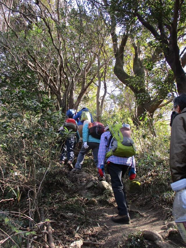 画像8: 【山旅会・登山ガイドこだわりツアー】岡田ガイドからの便り・阿部倉山から二子山ツアーにいってまいりました!