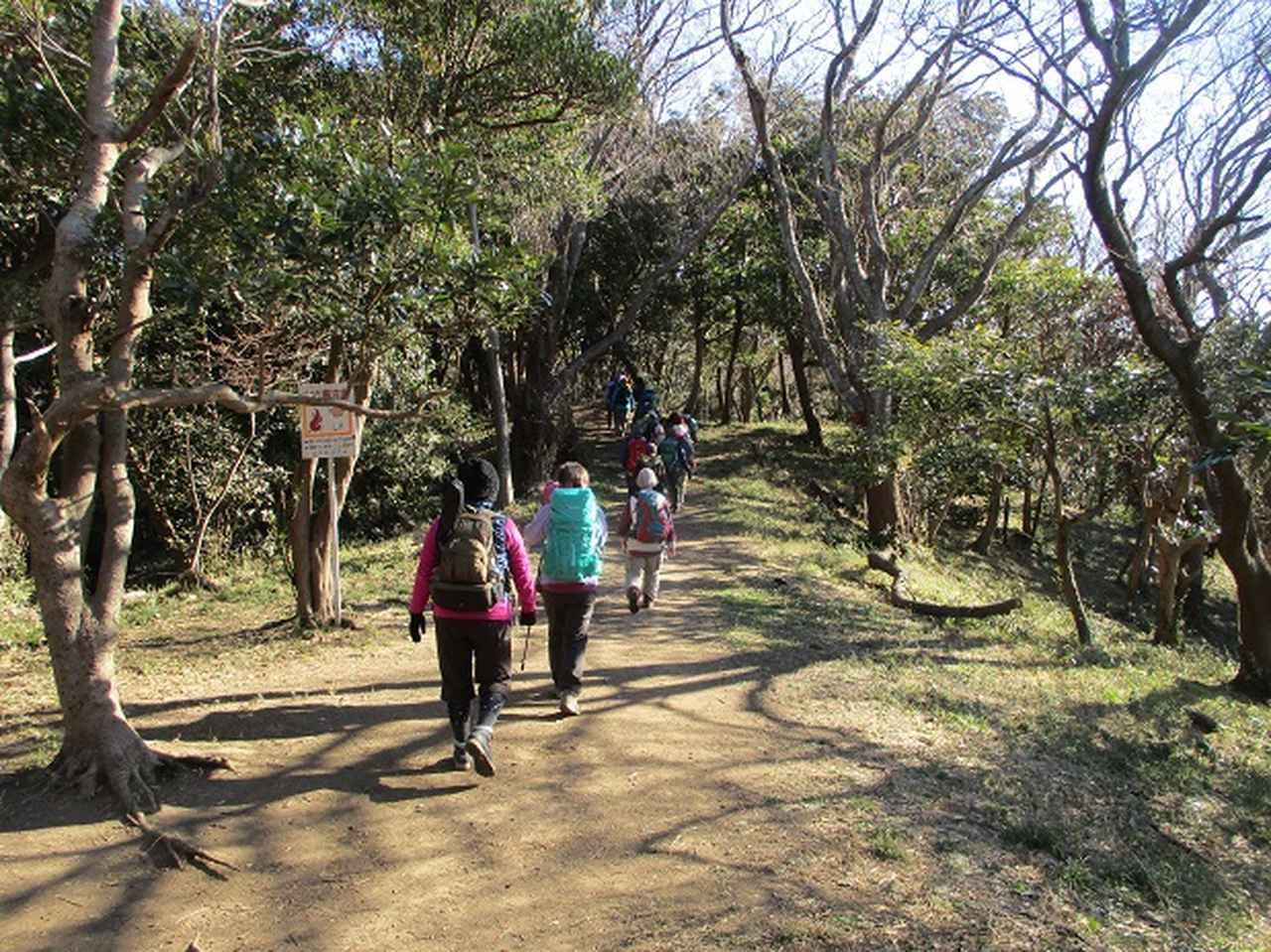 画像2: 【山旅会・登山ガイドこだわりツアー】岡田ガイドからの便り・阿部倉山から二子山ツアーにいってまいりました!