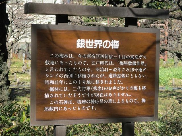 画像8: 【山旅会・登山ガイドこだわりツアー】岡田ガイドからの便り・都内の山ウォーキングの下見にいってまいりました!