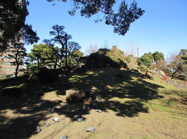 画像1: 【山旅会・登山ガイドこだわりツアー】岡田ガイドからの便り・都内の山ウォーキングの下見にいってまいりました!