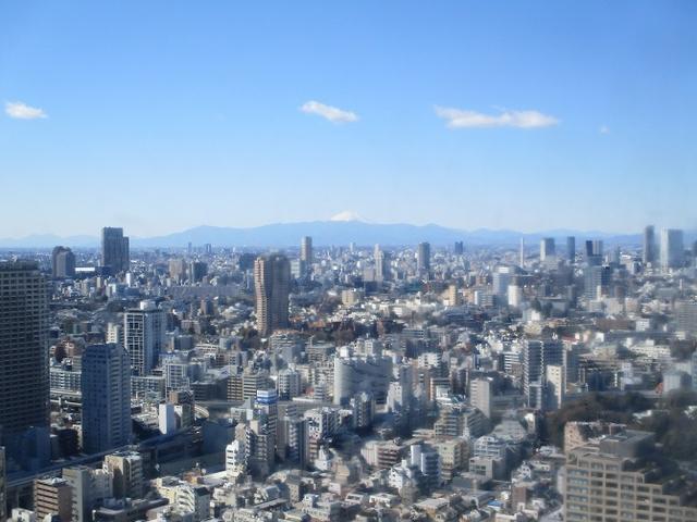 画像5: 【山旅会・登山ガイドこだわりツアー】岡田ガイドからの便り・都内の山ウォーキングの下見にいってまいりました!