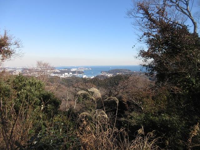 画像7: 【山旅会・登山ガイドこだわりツアー】岡田ガイドからの便り・三浦半島中尾根から乳頭山の下見にいってまいりました!