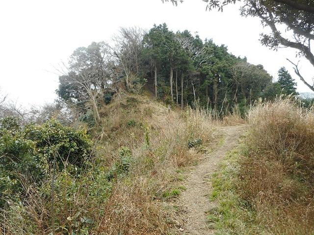 画像5: 【山旅会・登山ガイドこだわりツアー】岡田ガイドからの便り・三浦半島中尾根から乳頭山の下見にいってまいりました!
