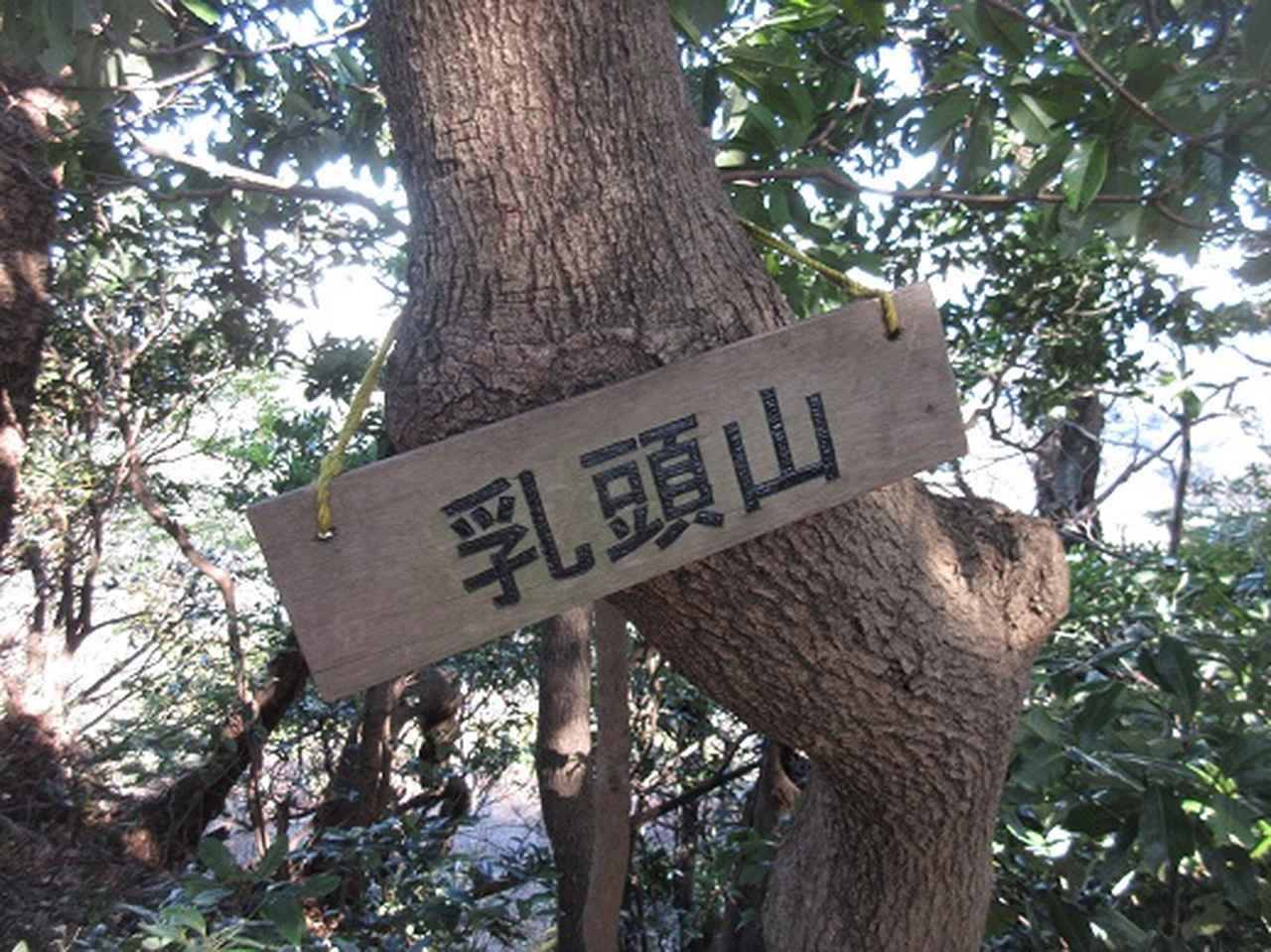 画像6: 【山旅会・登山ガイドこだわりツアー】岡田ガイドからの便り・三浦半島中尾根から乳頭山の下見にいってまいりました!