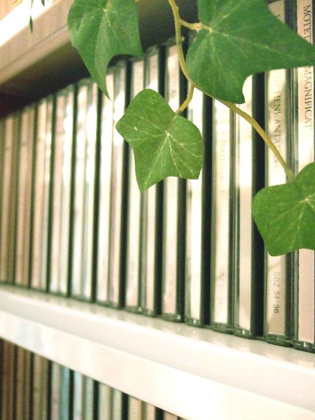 画像: CDがずらっと棚に並んでいると、ワクワクします♪