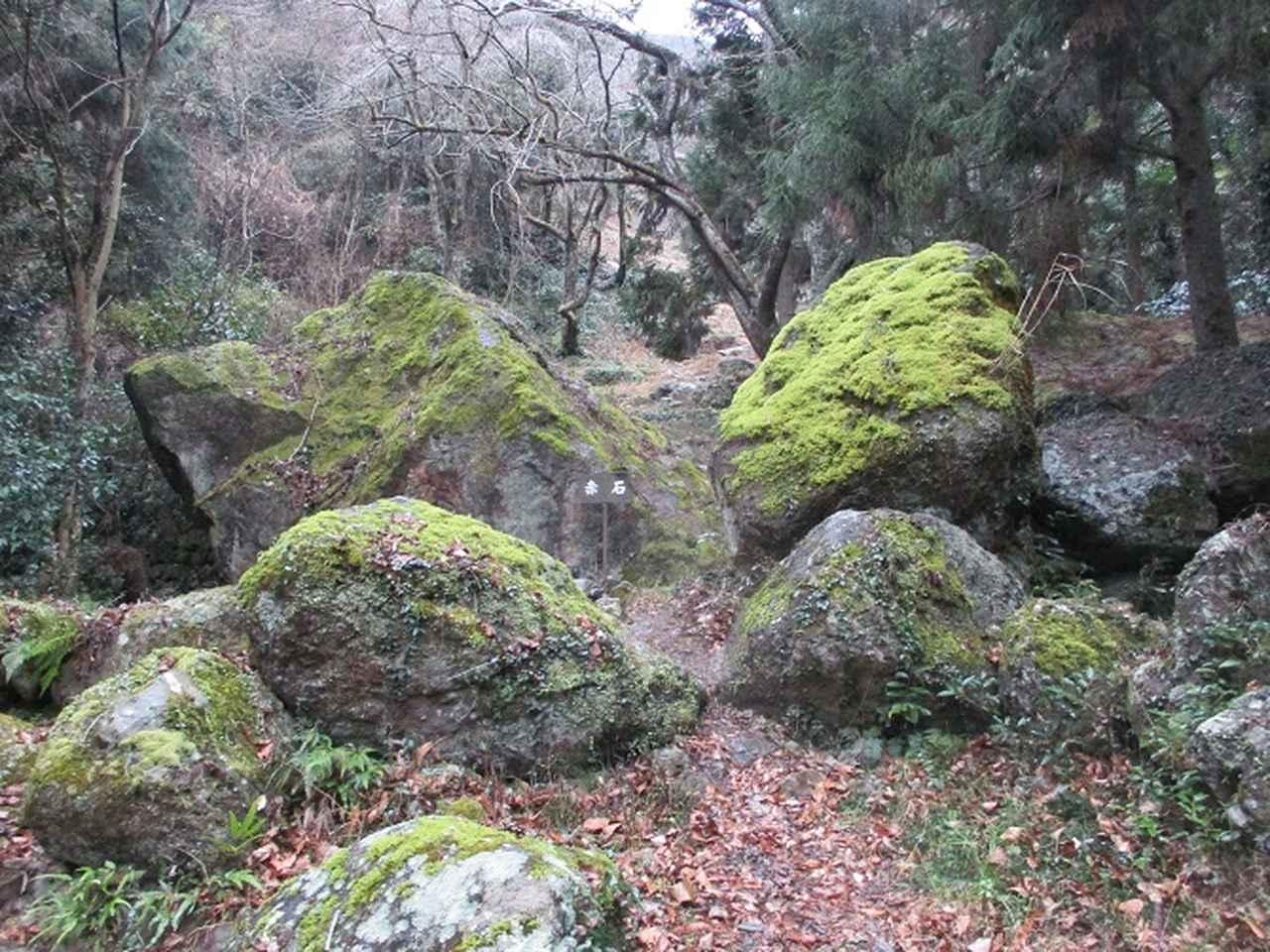 画像10: 【山旅会・登山ガイドこだわりツアー】岡田ガイドからの便り・石谷山(びく石)ツアーの下見にいってまいりました