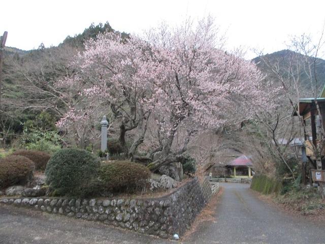 画像1: 【山旅会・登山ガイドこだわりツアー】岡田ガイドからの便り・石谷山(びく石)ツアーの下見にいってまいりました