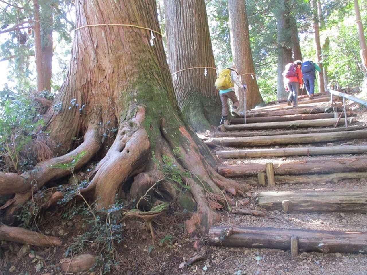 画像5: 2月1日に山旅会のツアーで 千葉山 にいってまいりました!