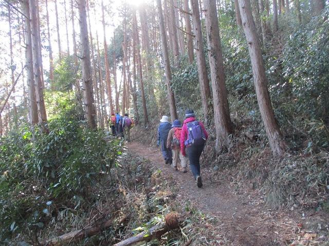 画像10: 2月1日に山旅会のツアーで 千葉山 にいってまいりました!