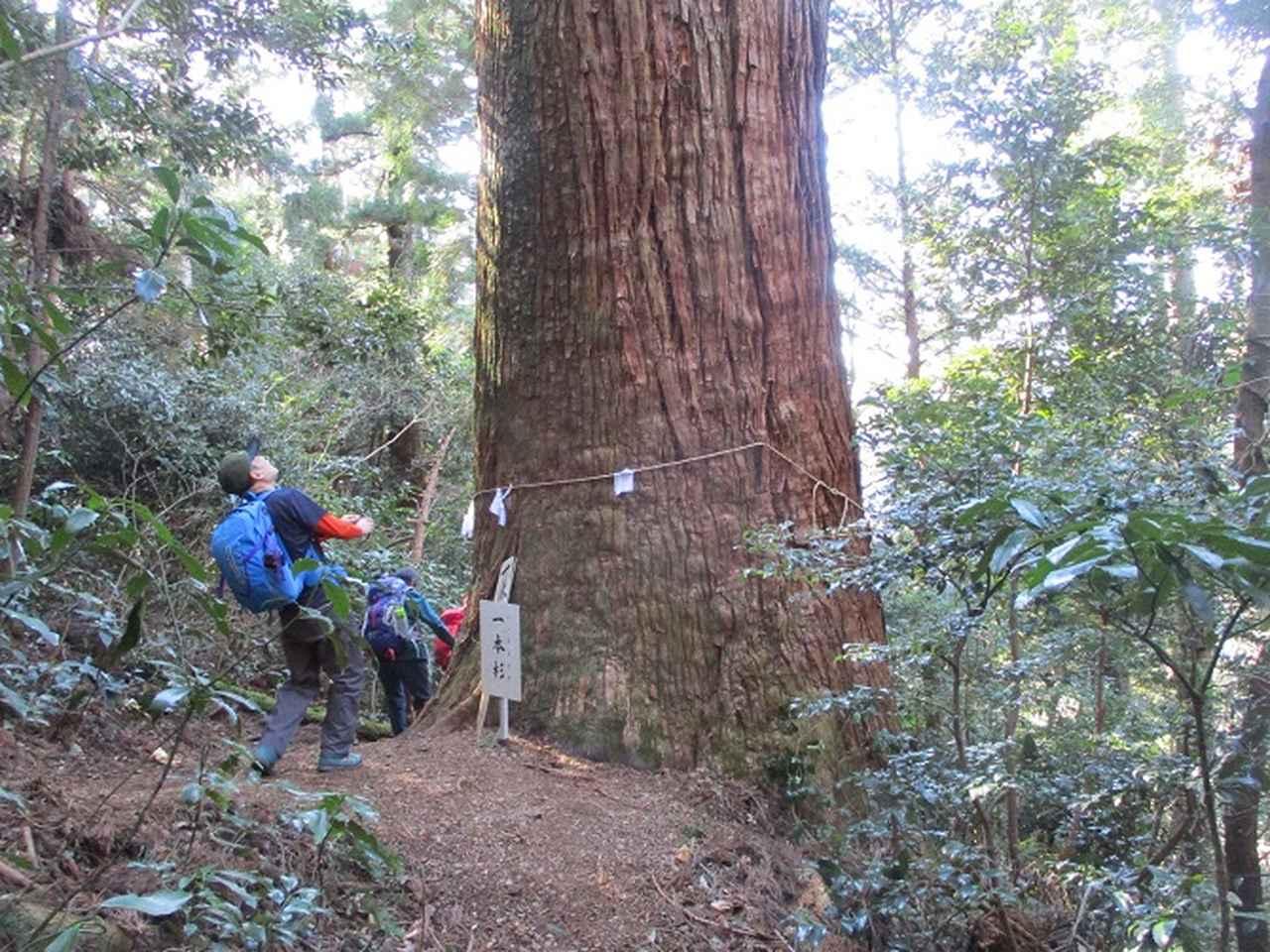 画像7: 2月1日に山旅会のツアーで 千葉山 にいってまいりました!