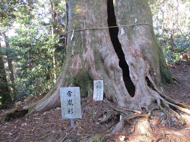 画像8: 2月1日に山旅会のツアーで 千葉山 にいってまいりました!