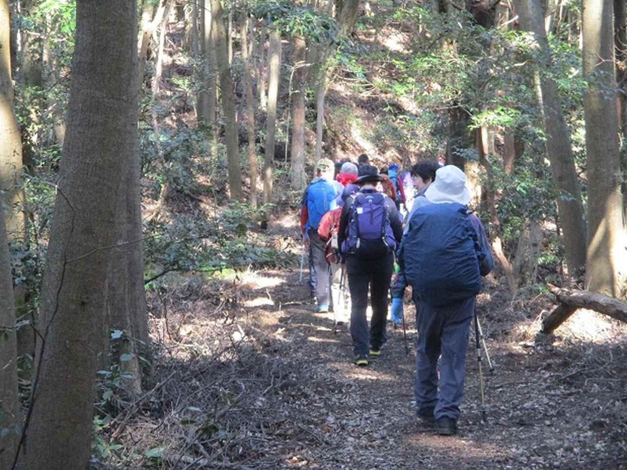 画像1: 2月1日に山旅会のツアーで 千葉山 にいってまいりました!