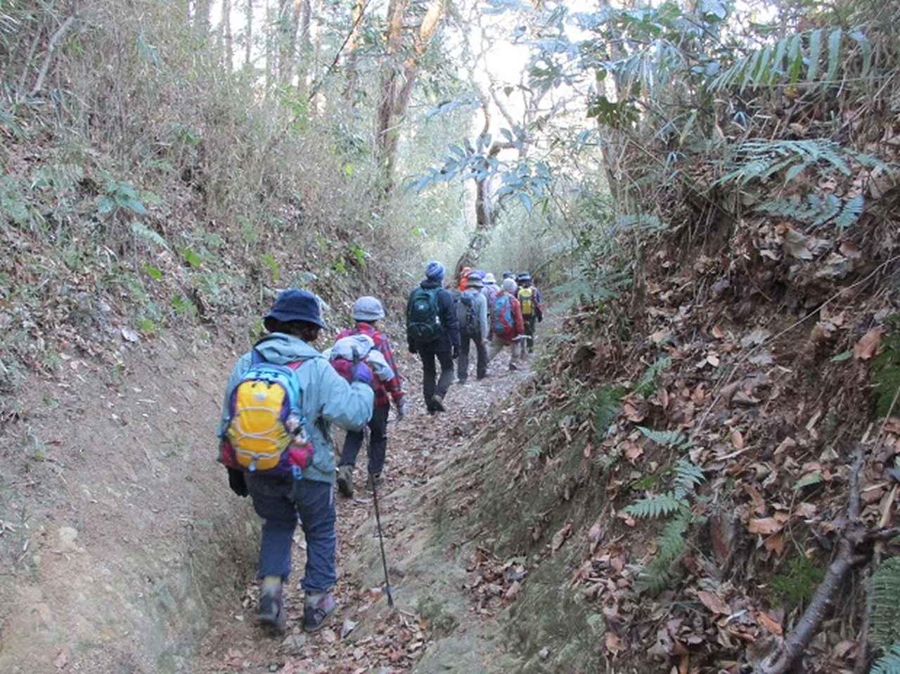 画像9: 2月2日、山旅会のツアーで 森戸川林道から二子山 にいってまいりました!